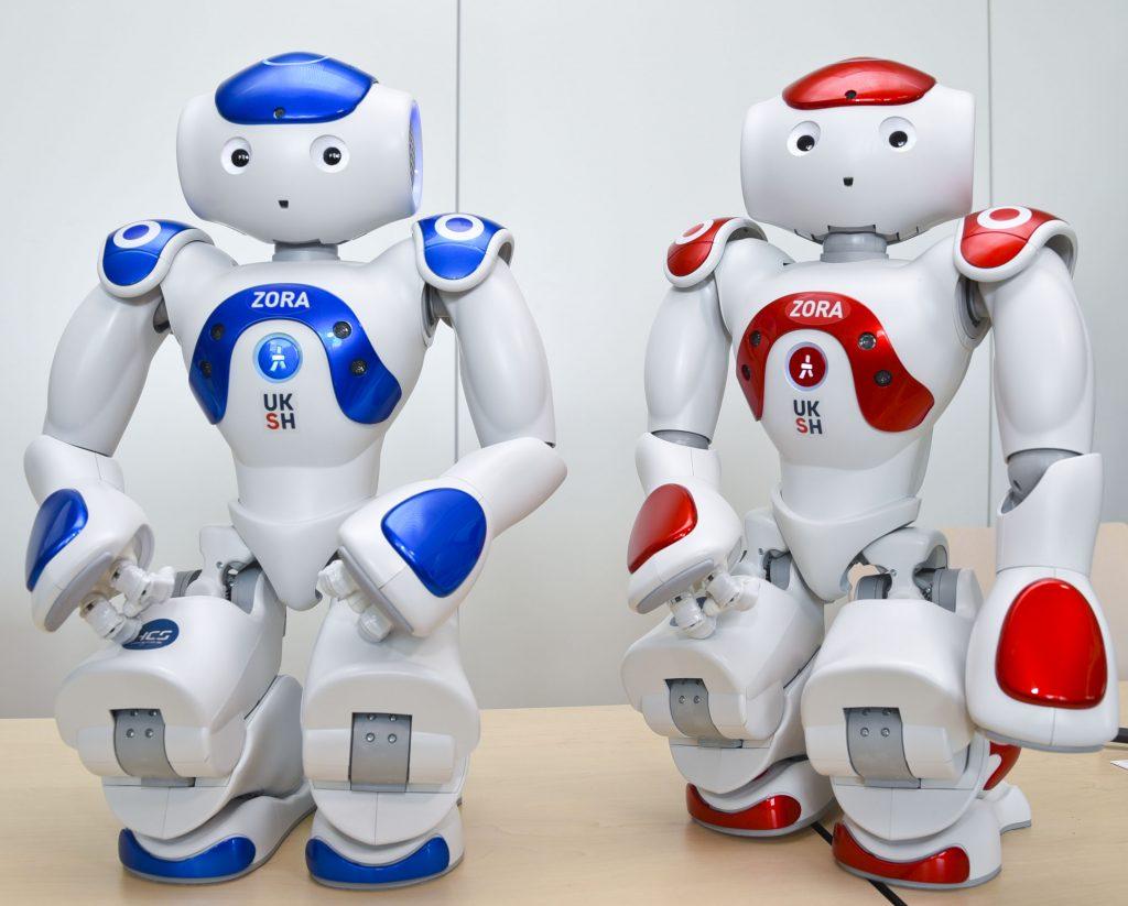 el robot enfermero Zora